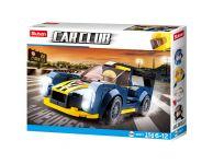 Car Club-Endurance Raceauto